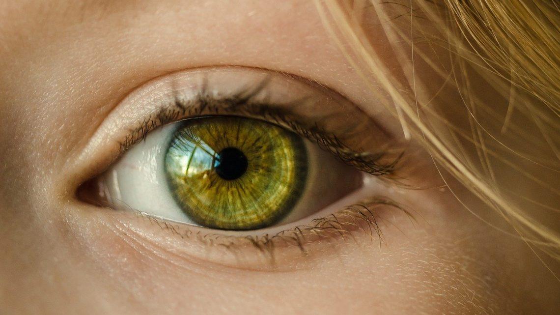 La recherche allemande sur les cellules souches lorgne sur les maladies de la rétine