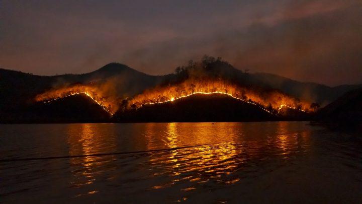 Détecter les feux de forêt sur des images satellites à l'aide de l'IA